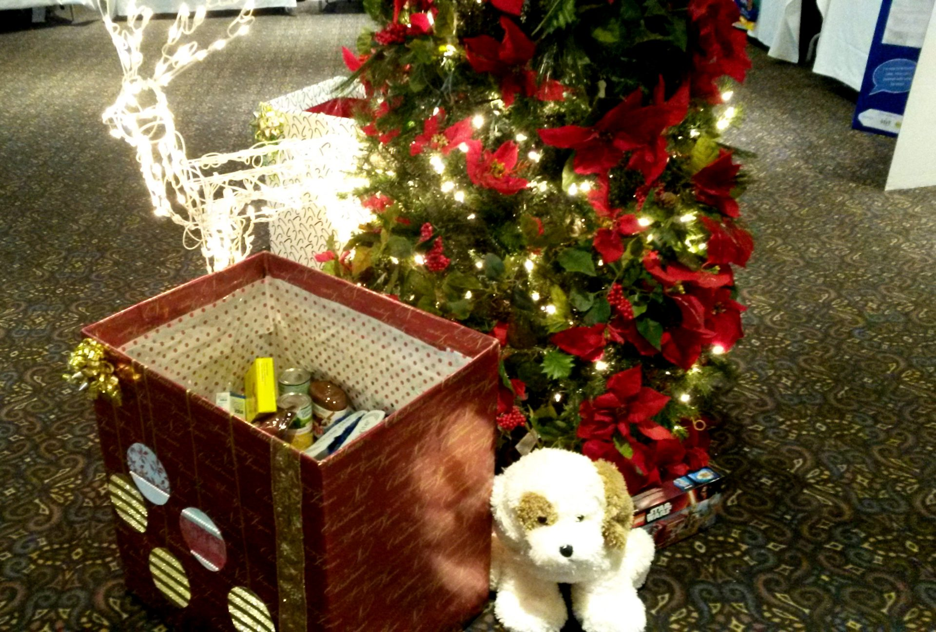 Festival Of Trees_Donations_1230_2015