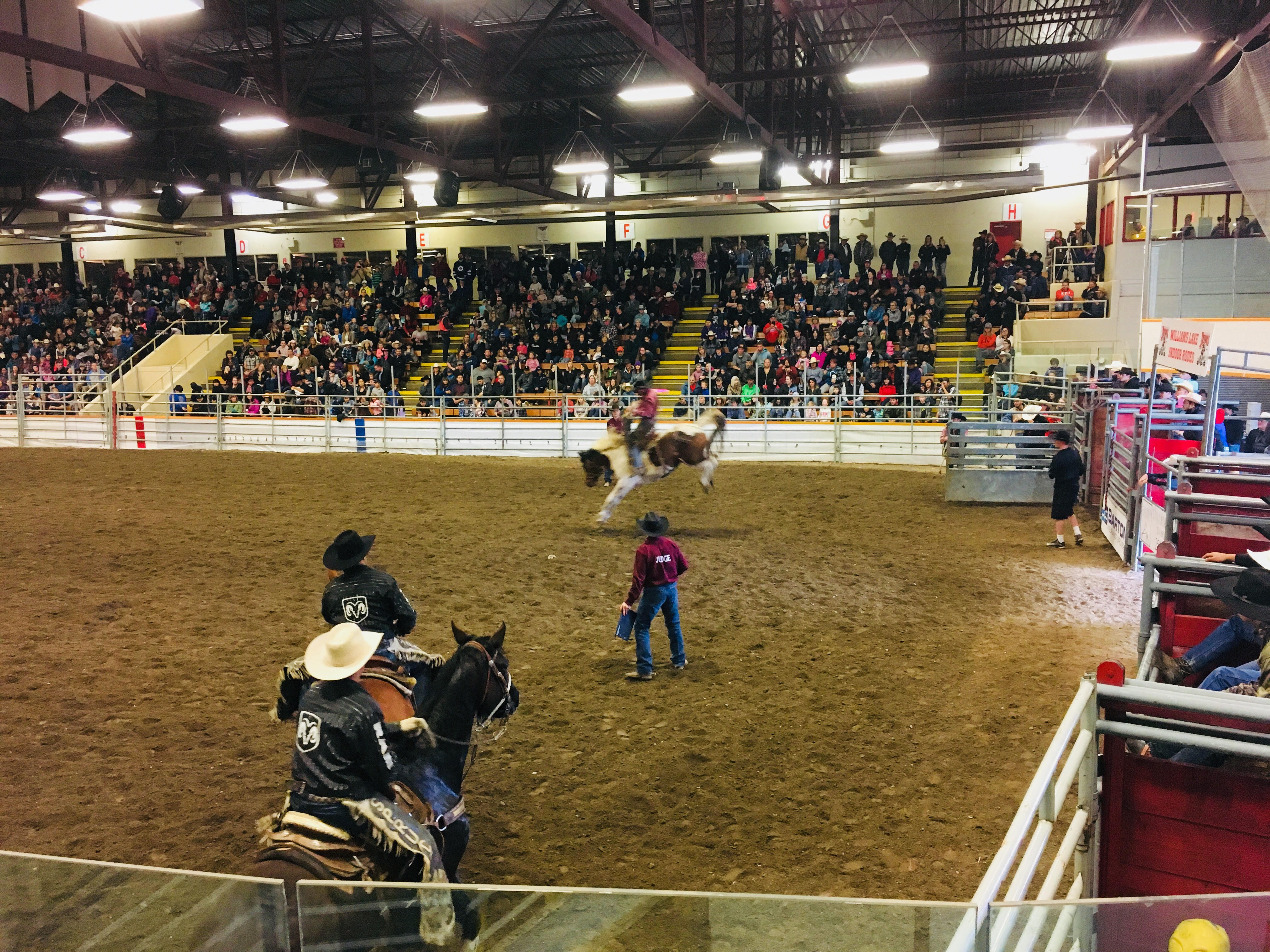 Cariboo Does Well At Season Opening Indoor Rodeo In